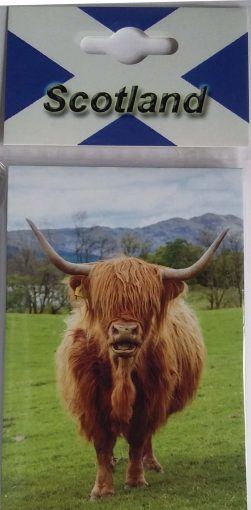 CPNP003 – Highland Cow