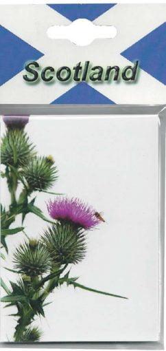 CPNP005 – Thistle