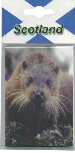 CPNP009 – Otter
