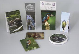 Wildlife Stock Images